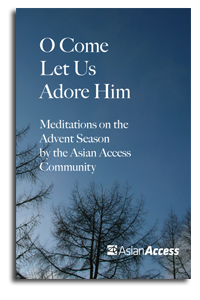 The Advent Devotional 2010 cover